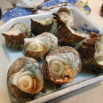 ささの葉 - つぶ貝