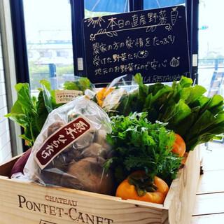 奈良の地元野菜を使った新鮮なサラダやパスタ