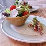 洋食屋 コンテブル - 前菜 サラダとホタルイカのカルパッチョ