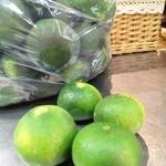 トラットリア・ラ・テスタドゥーラ - 伊豆産の摘果ミカンです。ミカンチェッロの原料になります。