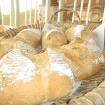 パン工房 クランベリー - 料理写真:田舎パン ライ麦カンパーニュ