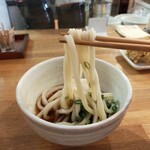 讃岐うどん いそや - 料理写真:冷ぶっかけの小 麺は硬めのコシ