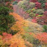 久國紅仙堂 - もみじの天ぷらを食べながら箕面大滝より登った紅葉中の山々♫