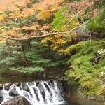 久國紅仙堂 - もみじの天ぷらを食べながら→箕面大滝までの紅葉♪