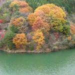 久國紅仙堂 - 箕面ダム(箕面ビジターセンターから細い山道で45分で到着)