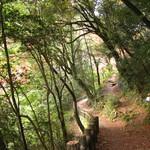 久國紅仙堂 - 細い山道をずっと~歩きました、もみじの天ぷら予備が必要!