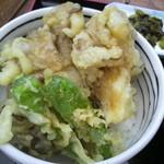 八ヶ岳パーキングエリア(下り線)赤岳 - 舞茸小天丼