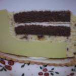 クドウ - ピスタチオのムース