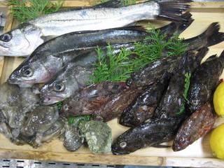 南風荘 - 目の前の海で獲れた新鮮なお魚をたくさんお出しします☆
