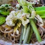 151508520 - 春のぶっかけそば                         採れたての山菜(こごみ コシアブラ ウルイ 蕗 蕗の薹等)が一杯