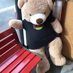 151931181 - 待ち合いの席にクマ。