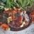この路 - 料理写真:国産肉使用・デミグラスソースのハンバーグ