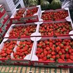 四方吉うどん - 埼玉産の苺、今年はこれで終わりとの事です。
