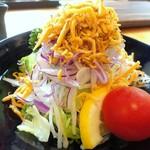 山の茶屋 - カリカリじゃこサラダ