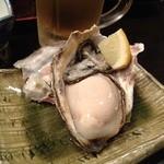 15248521 - プリプリ牡蠣