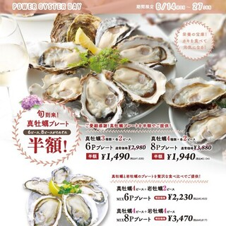【6/14~6/27】生牡蠣3種6個、4種8個プレート半額♪