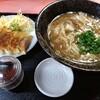 どんどん餃子 - 料理写真: