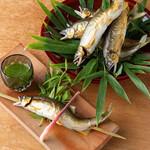 和食割烹 銀座 ます田 - 鮎塩焼き(鮎尽くしコースイメージ)