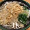 関西風手打うどん いらっしゃい - 料理写真:たぬきうどん