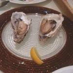ペシェトリア マイモン - 彼女は、牡蠣が大好物!