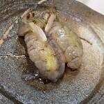 福ずし - 生の蝦蛄であります!
