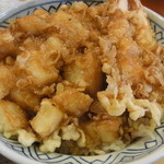 15295152 - 天丼