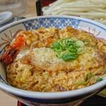 どんどん - 料理写真:ざるうどんと天丼のセット (唐樋店限定)  [¥760]