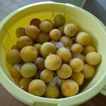 昇珠園 - 料理写真:5kgは梅干しにするため、塩漬けしました