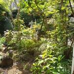 153598265 - 庭園
