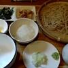 朱雀 - 料理写真:冷やしおろし蕎麦