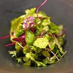 Il Lato - 無農薬16種類のハーブのサラダ