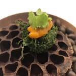 154130878 - 初めは刻み大葉でデコレートされた海老団子の生雲丹乗せ!パクッと一口で!大葉と雲丹の風味に海老の旨味、そして蓮根の食感も楽しめてなかなか美味しいですね!