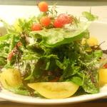 阿古 - 有機野菜たっぷりのサラダ