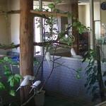 サンマリノ - 「大きなガラス張りの鳥小屋」と白いセキセイインコ