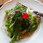 ミオンエシカルキッチン&カフェ - サラダ。 こちらは普通かも。