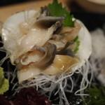 魚吉 - ホッキ貝の刺身