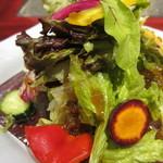 15477919 - 朝取れ野菜のサラダ