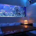 DEN アクアルーム 新宿 - 幻想的な青の海底半個室。