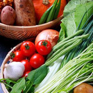 熊本県 山都町産 JAS有機野菜