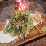 154853551 - いろいろな山菜の天婦羅