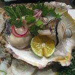 1549601 - 生岩牡蠣