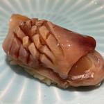 Sushimatsumoto - 千葉県産 赤貝