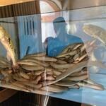 一色産地焼き鰻 福乃城 - 見るからに元気いっぱいの鰻とフグ