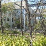 1554973 - 外観(5月の今はもっと木々が茂っています)