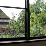 茶ノ木カフェ - 店内からの景色