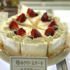 Kafedoshinamoni - 料理写真:苺のクリームケーキ