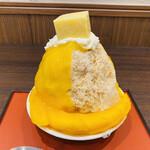155621014 - 静岡マンゴーとマンゴープリン 2,200円