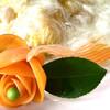 かすみ食堂 - 料理写真:海老と玉子のふわふわ炒め