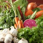 IBIZAバル - 鎌倉野菜など朝採れの新鮮野菜★