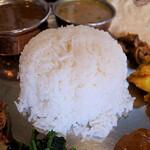 Spice食堂 - ライスはインディカ米と日本米をブレンドしているそうでつ。